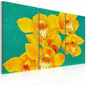 Schilderij - Geel op groen - Orchidee , 3 luik , 2 maten