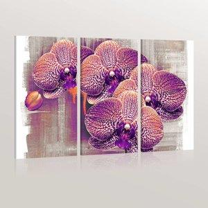 Schilderij - artistiek  - Orchidee , paars rood , 3 luik , 2 maten