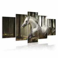 Schilderij - Paard in het bos, schimmel , zwart wit , 5 luik