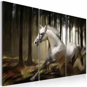 Schilderij - A white horse in the midst of the trees