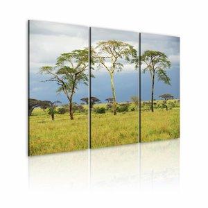 Schilderij - Terug naar Afrika , blauw groen , boom , 3 luik , 2 maten