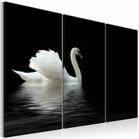 Schilderij - Eenzame witte zwaan ,  zwart , 3 luik