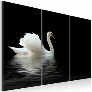 Schilderij - Eenzame witte zwaan ,  zwart , 3 luik , 2 maten