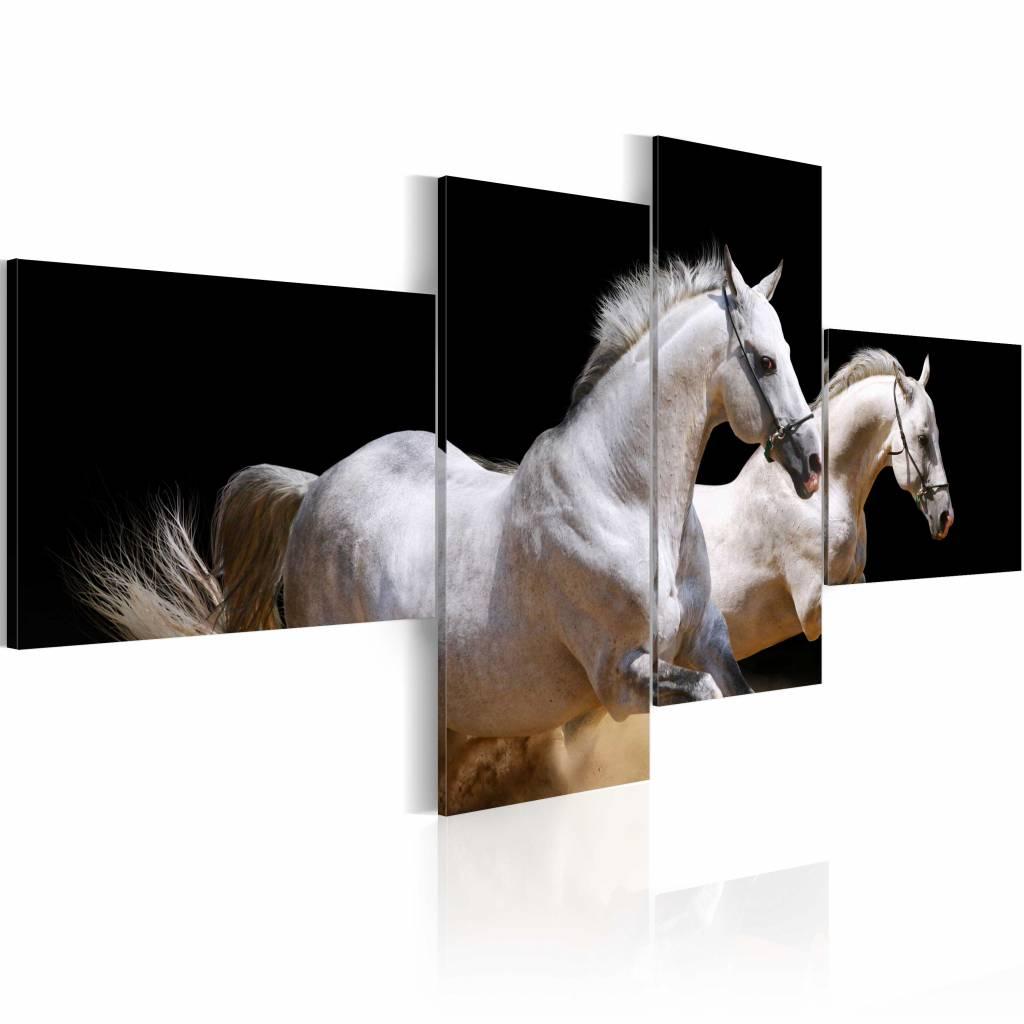 Schilderij - Paarden in gallop , wit zwart , 4 luik