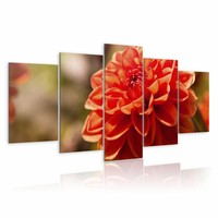 Schilderij - Dahlia , oranje , 5 luik   , bloem