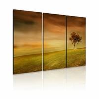 Schilderij - Eenzame boom op een veld , oranje groen , 3 luik
