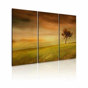 Schilderij - Eenzame boom op een veld , oranje groen , 3 luik , 2 maten