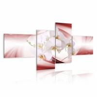 Schilderij - Orchideeën op zachte roze achtergrond , wit , 4 luik