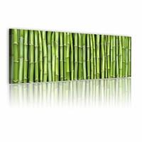 Schilderij - Muur van bamboe , 120x40 , 1 luik , groen
