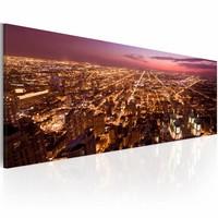 Schilderij - Vlucht over Chicago  , bruin paars , 1 luik  , 120x40cm