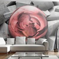 Fotobehang - Roos van stenen