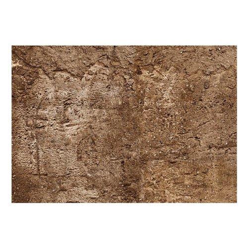 Fotobehang - Grotmuur , bruin