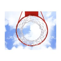 Fotobehang - Basketbal ring