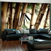 Fotobehang - Mist in het bamboe bos