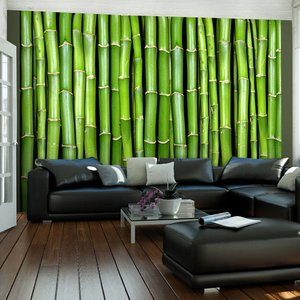 Fotobehang - Bamboe muur