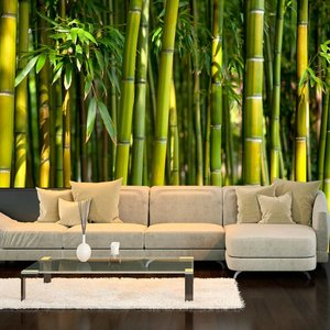 Fotobehang - Oriental Garden, bamboe
