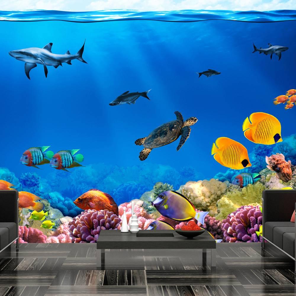 Fotobehang - Onderwater , multi kleur