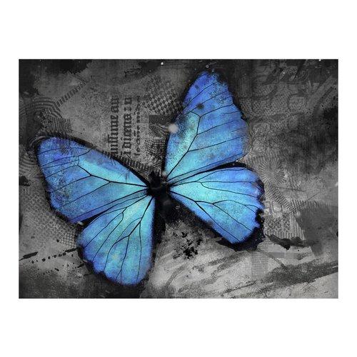 Fotobehang - Blauwe Vlinder , grijs