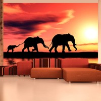 Fotobehang - Olifanten familie , oranje zwart