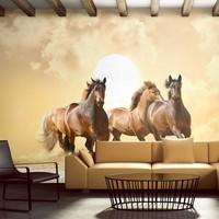 Fotobehang - Galopperende Paarden , beige bruin