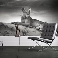 Fotobehang - Zwart-wit leeuwin