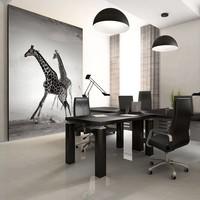 Fotobehang - Giraffen , zwart wit