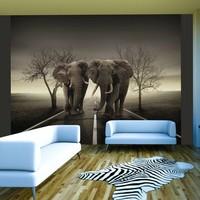 Fotobehang - Stad van olifanten