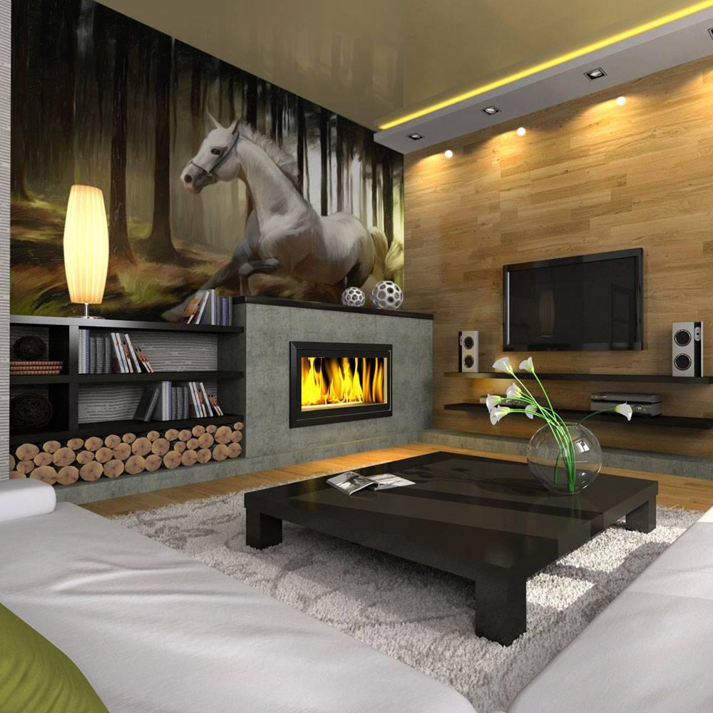 Fotobehang - Schimmel paard , zwart wit