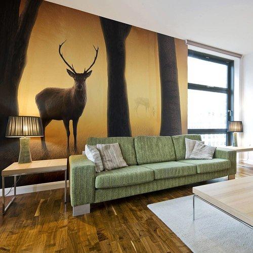 Fotobehang - Hert in zijn natuurlijke omgeving , beige bruin