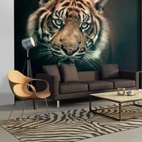 Fotobehang - Bengal Tiger
