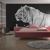 Fotobehang - Witte tijger , zwart wit , 5 maten