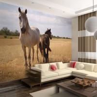 Fotobehang - Horse and foal