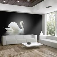 Fotobehang - zwaan  , zwart  wit ,  5 maten