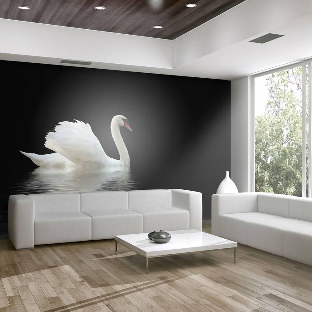 Fotobehang - zwaan , zwart wit
