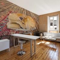 Fotobehang - Hertje thuis , beige bruin , 1 maat
