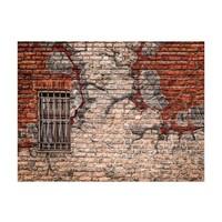 Fotobehang - Afbrokkelende muur