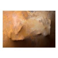 Fotobehang - Aanraking (3D) , bruin beige
