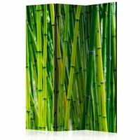 Vouwscherm - Bos van Bamboe 135x172cm gemonteerd geleverd, dubbelzijdig geprint (kamerscherm)