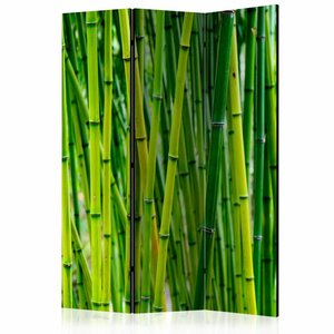 Vouwscherm - Bos van Bamboe 135x172cm gemonteerd geleverd (kamerscherm)
