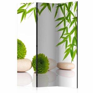 Vouwscherm  - Kamerscherm - Groen relax 135x172cm