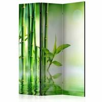 Vouwscherm - Kamerscherm - Groen Bamboe 135x172cm , gemonteerd geleverd, dubbelzijdig geprint