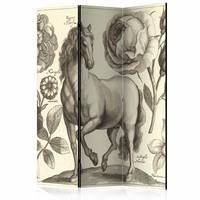 Vouwscherm - Paard 135x172cm , gemonteerd geleverd (kamerscherm), dubbelzijdig geprint