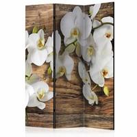 Vouwscherm - Orchidee op hout 135x172cm