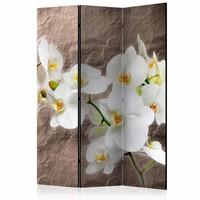 Vouwscherm - Perfectie van de Orchidee 135x172cm, gemonteerd geleverd (kamerscherm) dubbelzijdig geprint