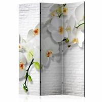 Vouwscherm - Orchidee op witte muur 135x172cm, gemonteerd geleverd (kamerscherm)