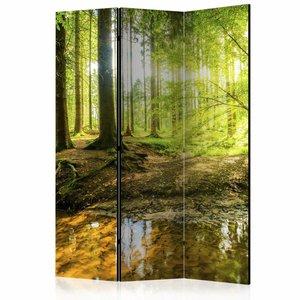 Vouwscherm - Zonlicht in het bos 135x172cm , gemonteerd geleverd (kamerscherm) dubbelzijdig geprint