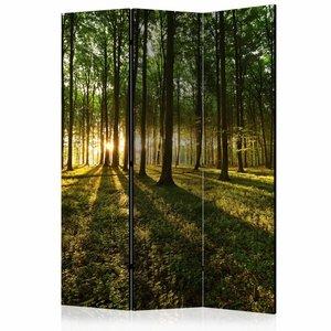 Vouwscherm - Ochtend in het bos 135x172cm , gemonteerd geleverd (kamerscherm) dubbelzijdig geprint