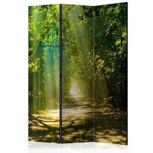 Vouwscherm - Pad door het bos 135x172cm  , gemonteerd geleverd (kamerscherm) dubbelzijdig geprint