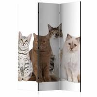 Vouwscherm - Lieve katten 135x172cm, gemonteerd geleverd, dubbelzijdig geprint (kamerscherm)