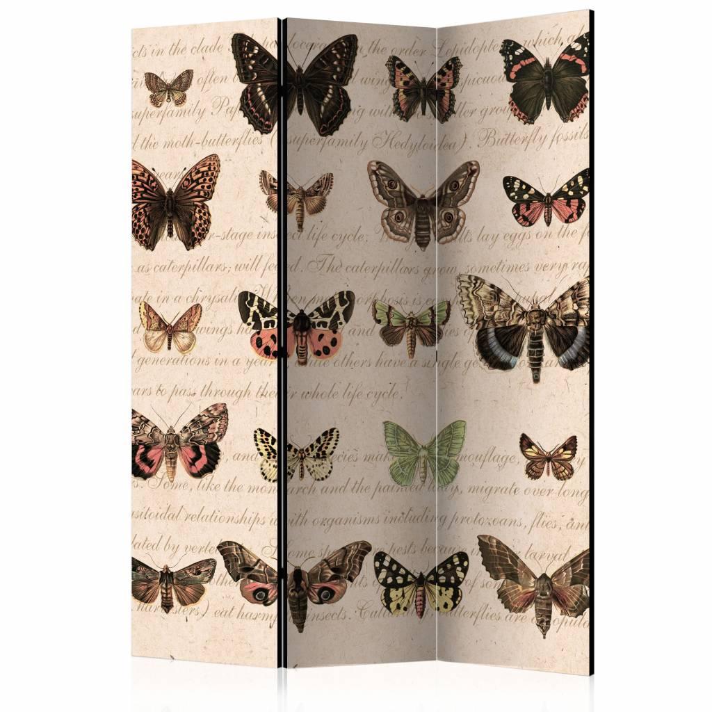 Vouwscherm - Vlinders in retro style 135x172 cm